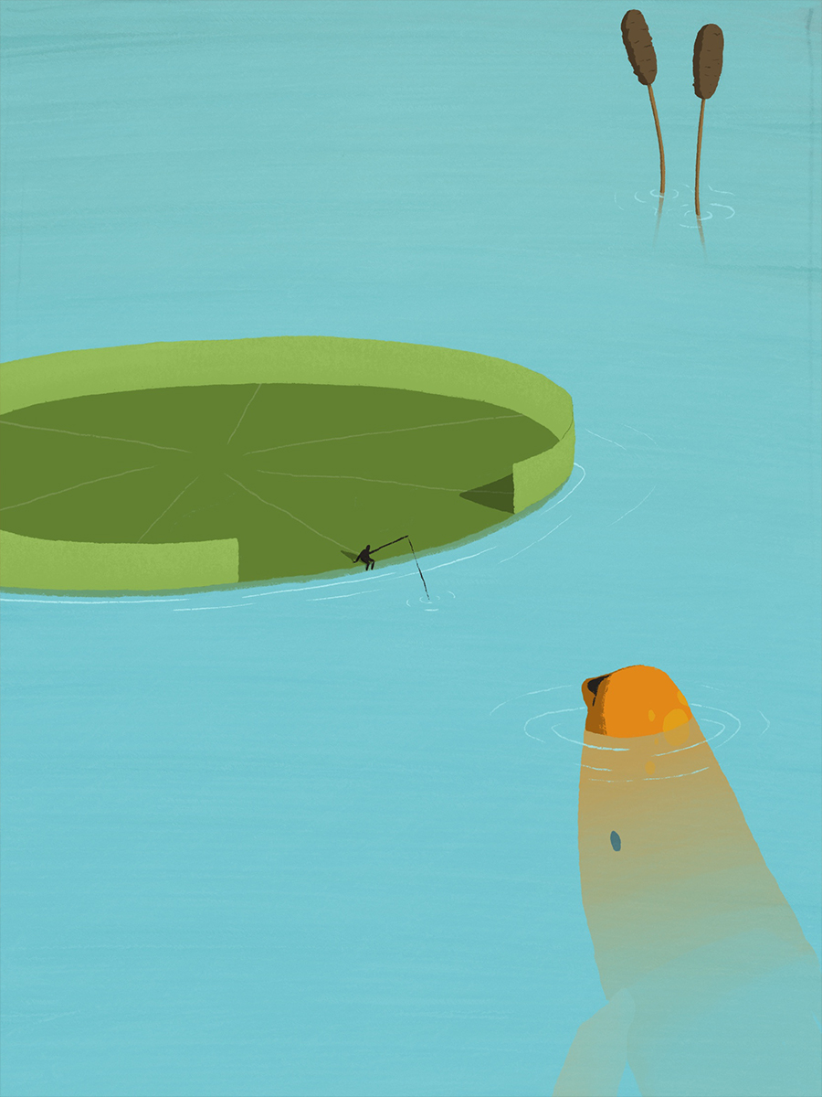 leeds illustration illustrator andy carter fishing on a giant lily pad with koi fish