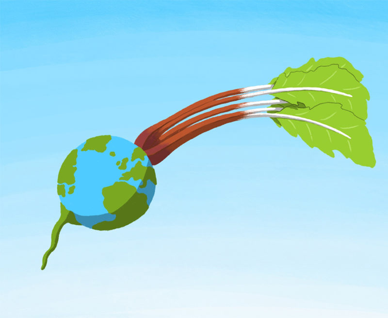 leeds illustration if the world was vegan earth as a turnip