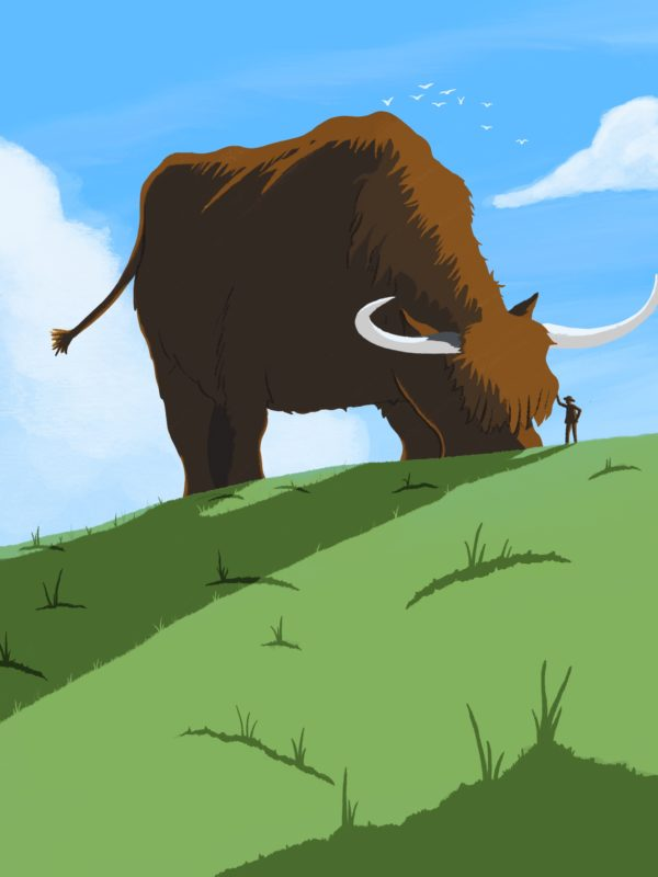 leeds illustration yorkshire countryside animals cow